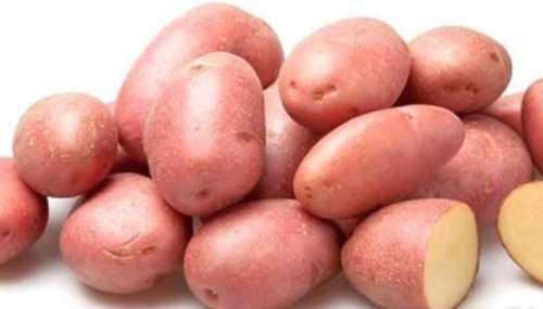 Особенности лучших сортов картофеля: фото,