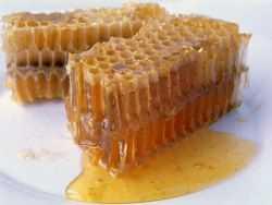 Как хранить мед в сотах